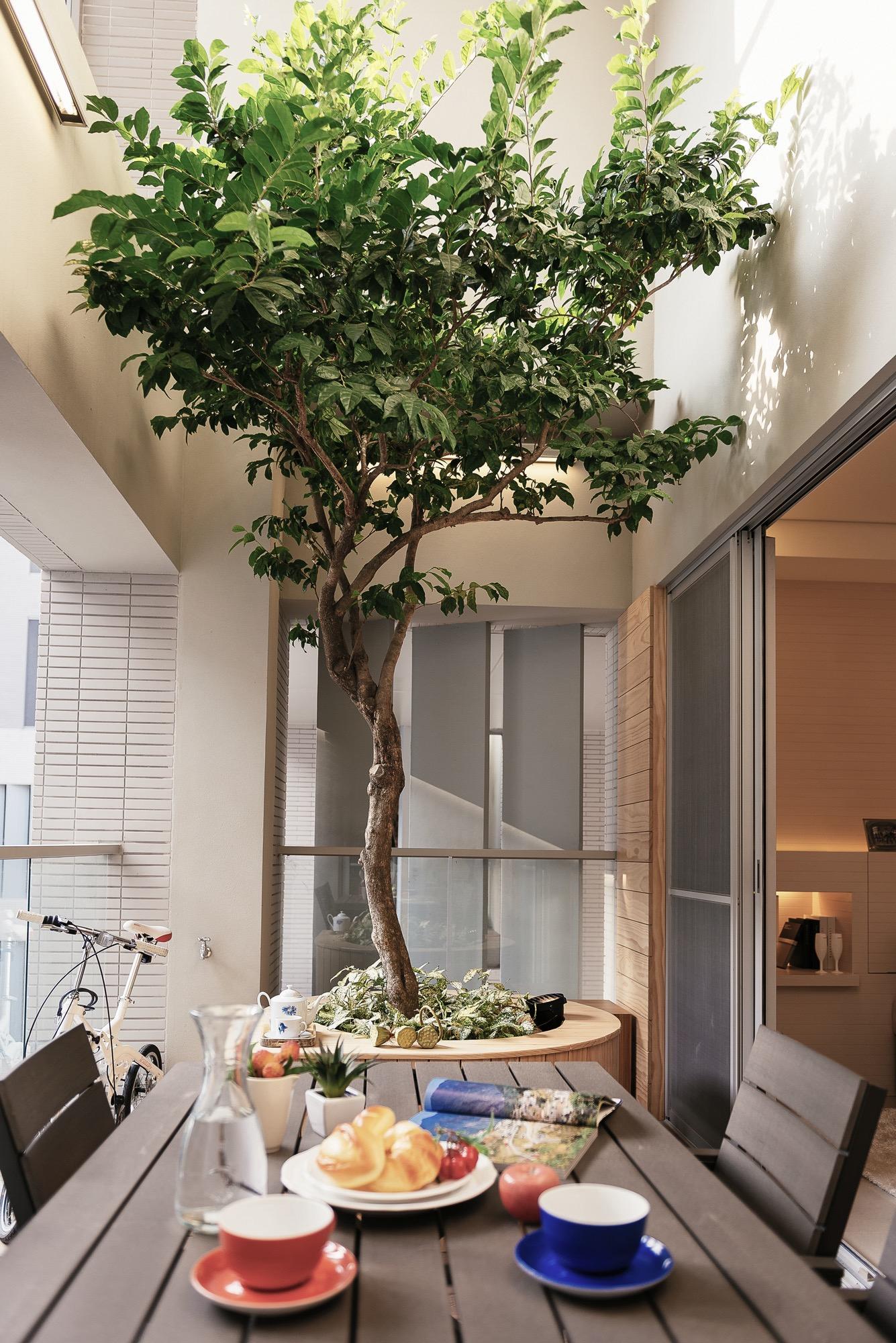 竹北原見築一宅一樹