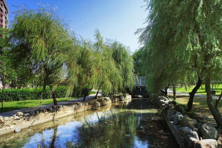 水圳森林公園
