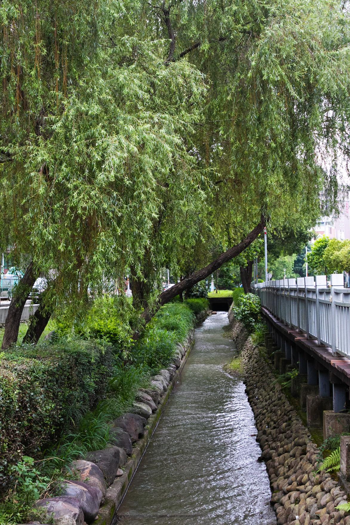 新竹高鐵特定區的竹北六家水圳