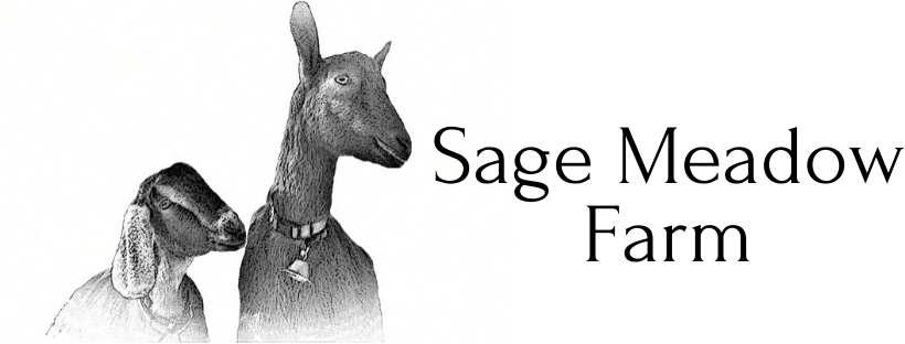 Buy skin care products and Goat milk body lotion online in Sage meadow farm