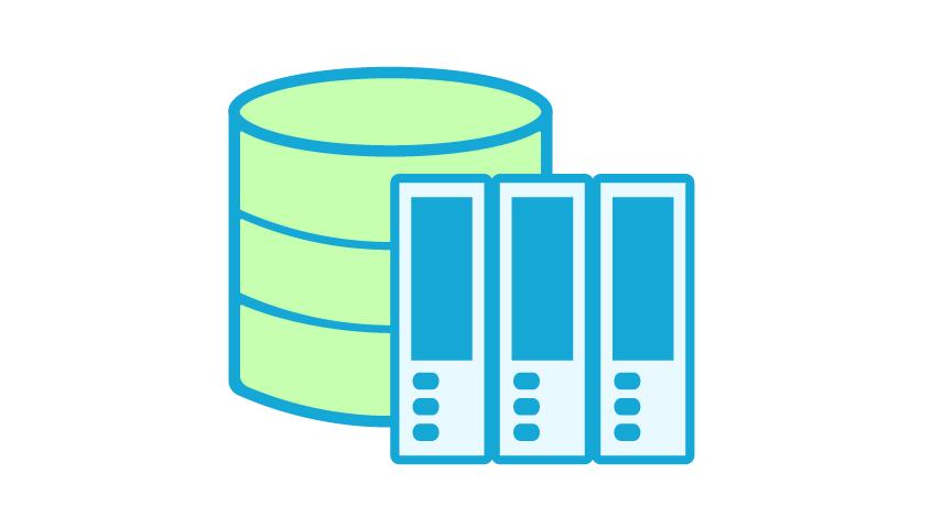 PERFEQTA Storage Information & Procedures