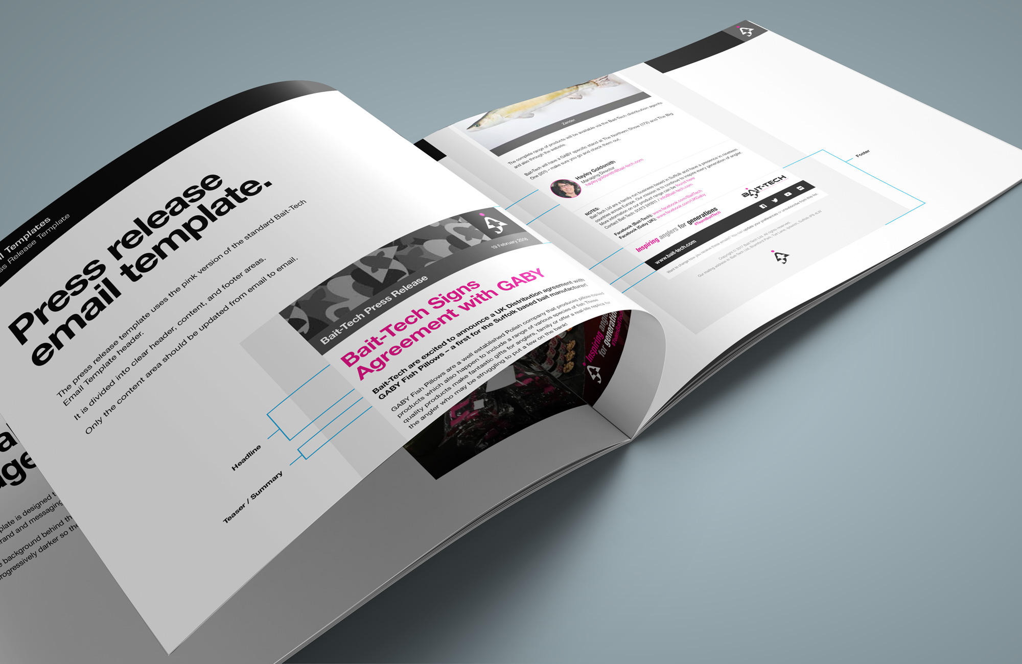 Design System Booklet to promote consistency of brand assets