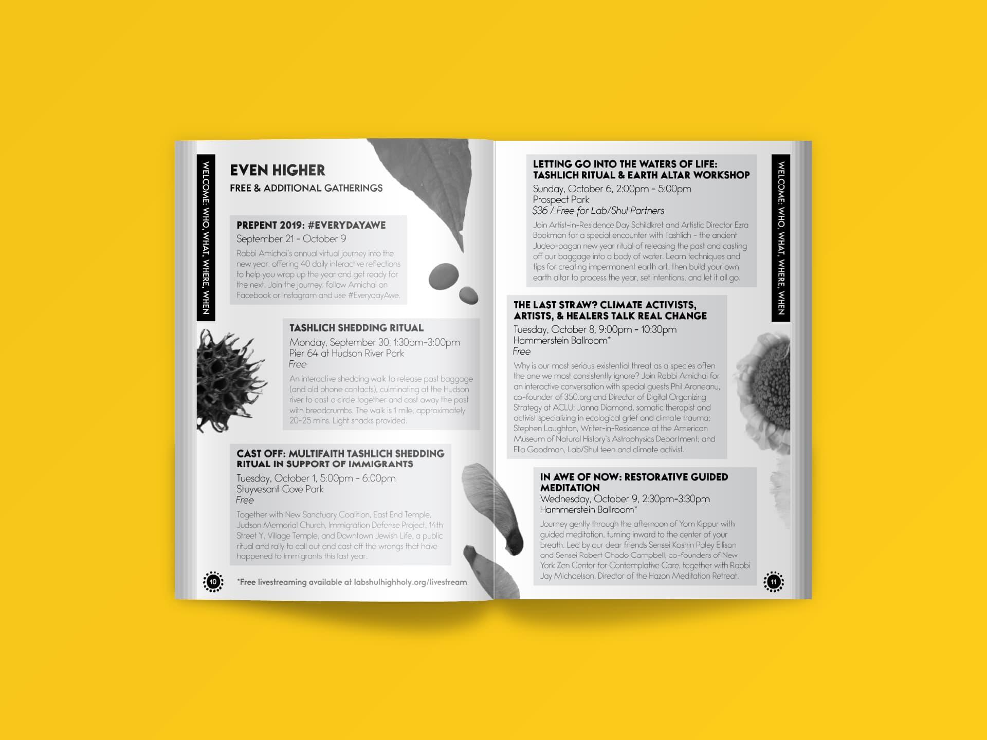 Program (Pages 10-11)