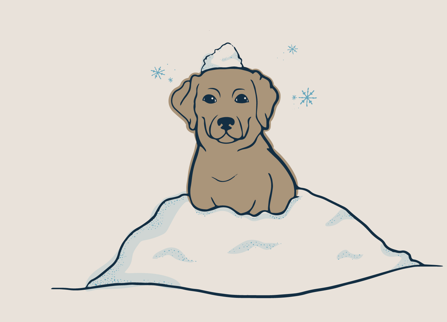 An illustration of a dog with snow on its head created for Grounds & Hounds Coffee.