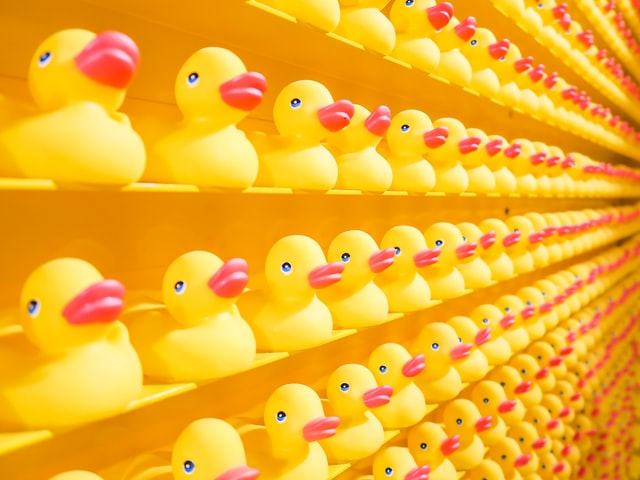 Shelfs full of yellow rubber ducks