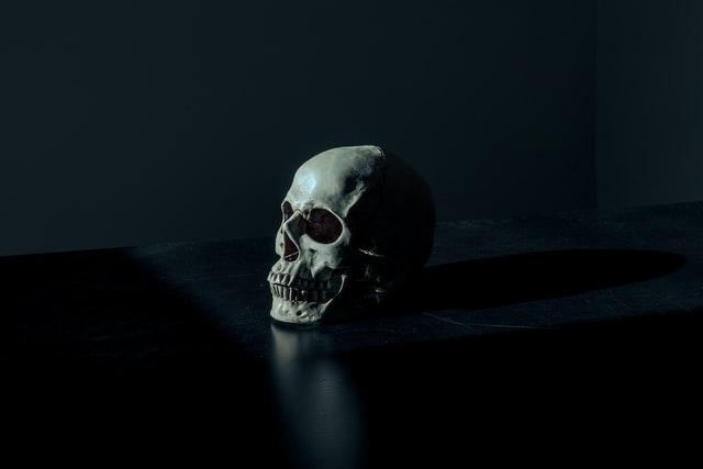 A skull in a dark setting.