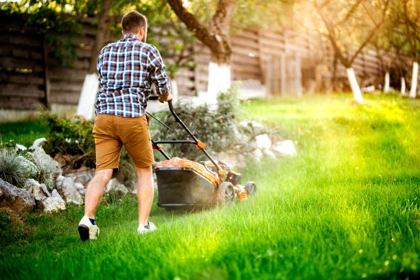 What is Lawn Care Software?