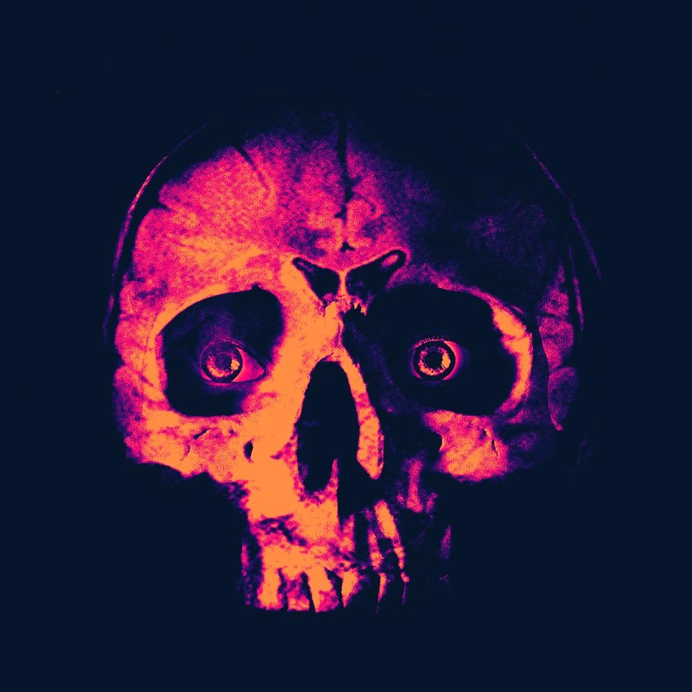 skull brain face