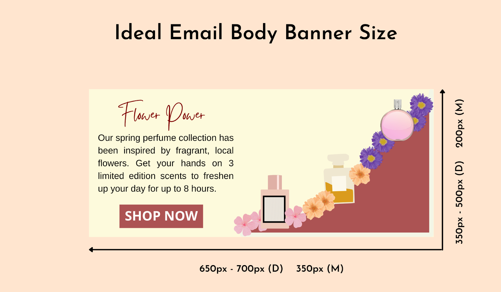 Ideal email body banner size