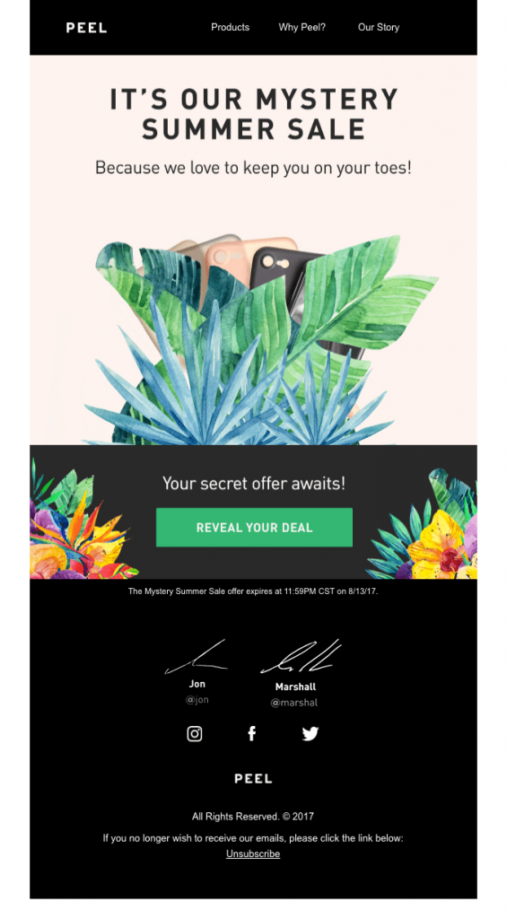 Example of best selected promotional email
