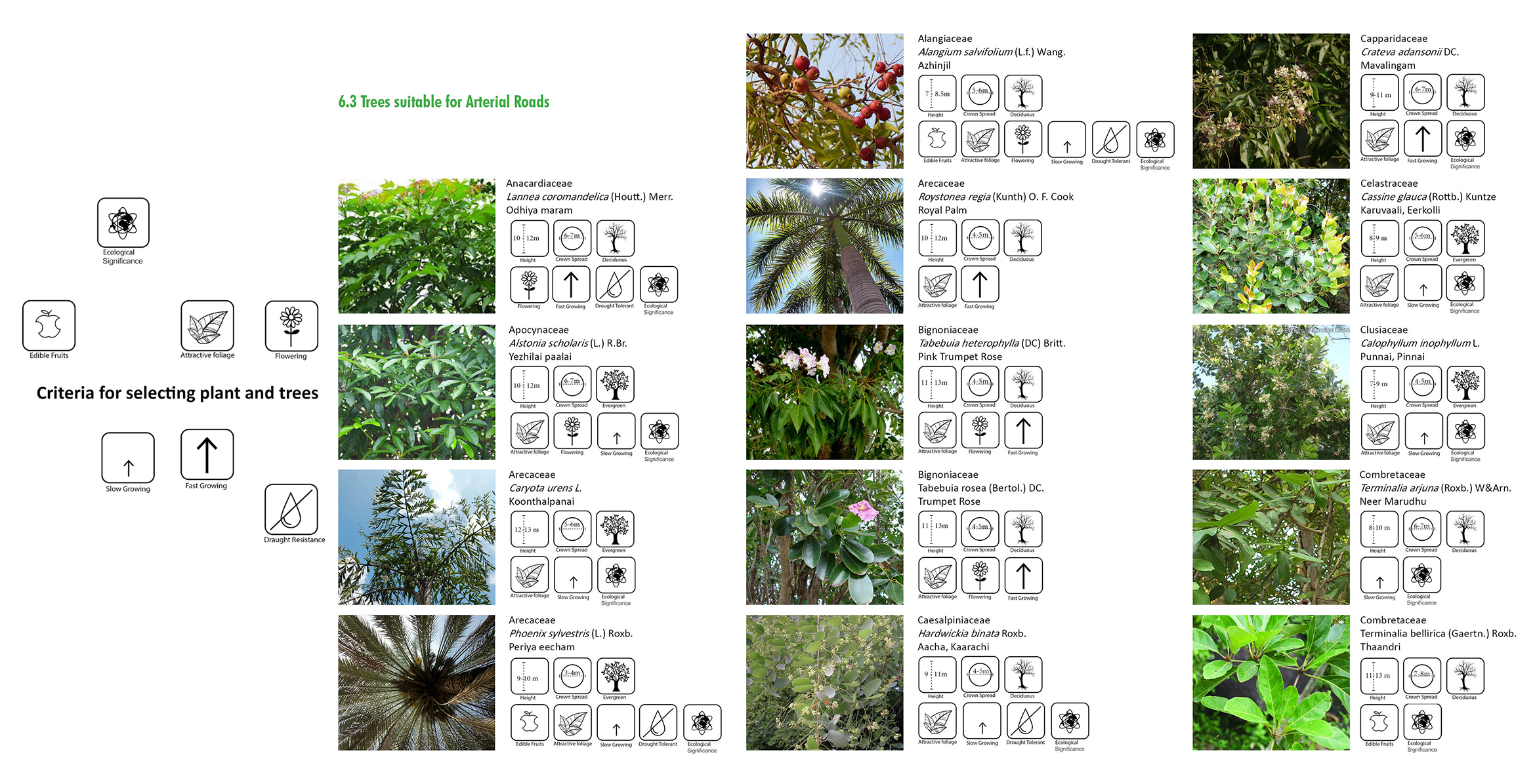 7.The catalogue of flora that are to be used and their properties