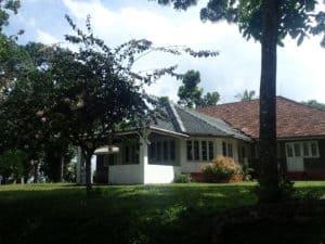 Plantage Pantiya Estate