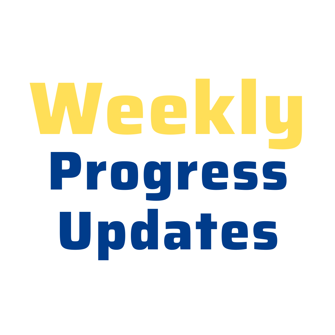 Weekly 11+ progress updates