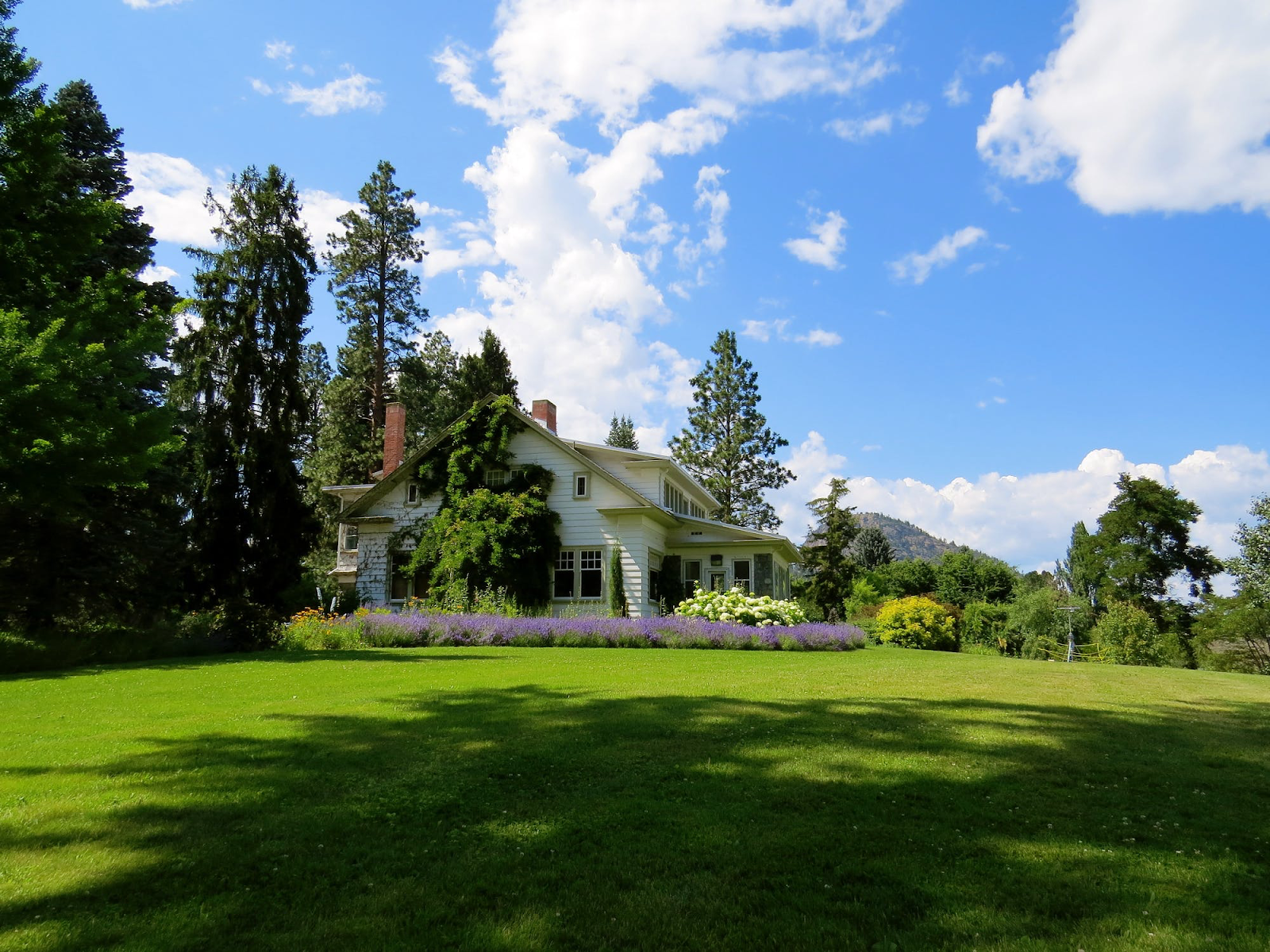 A side view of a white home with a sprawling green lawn