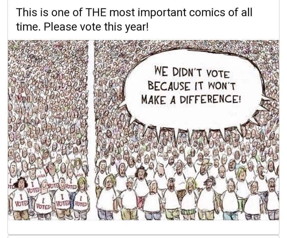 Do not just rely on collective action but make sure to vote because if someone like you cared a whole awful lot things may get better. You have more power than you think because many do not vote and have that same mentality as the comic shows.
