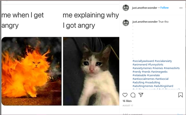 Meme depicting a cat on fire on the left and a crying cat on the right