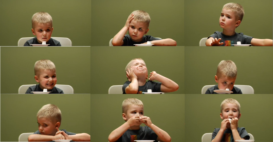 nine small images of one boy with a plate with one marshmallow on it
