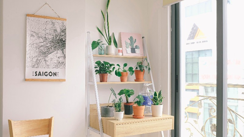 A bedroom with a shelves filled with plants