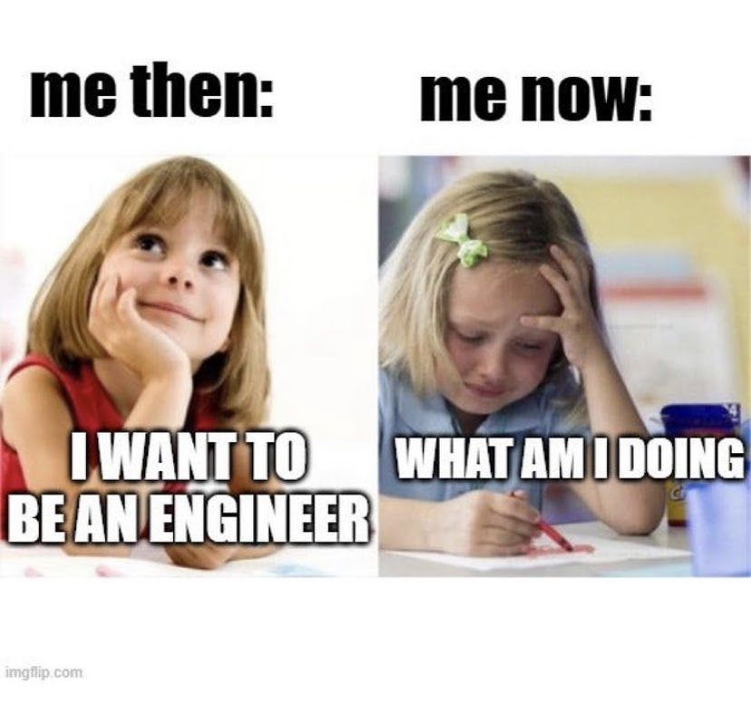 a meme of a young girl dreaming about being engineer versus her crying years later