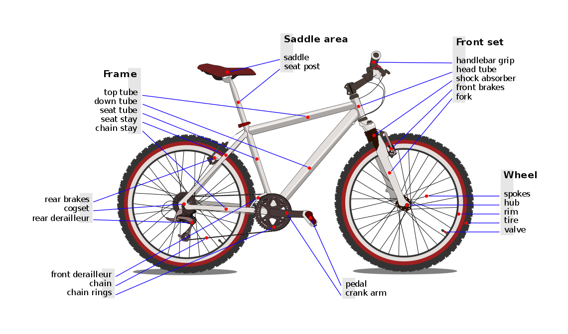 A graphic that shows the different parts of a bike.