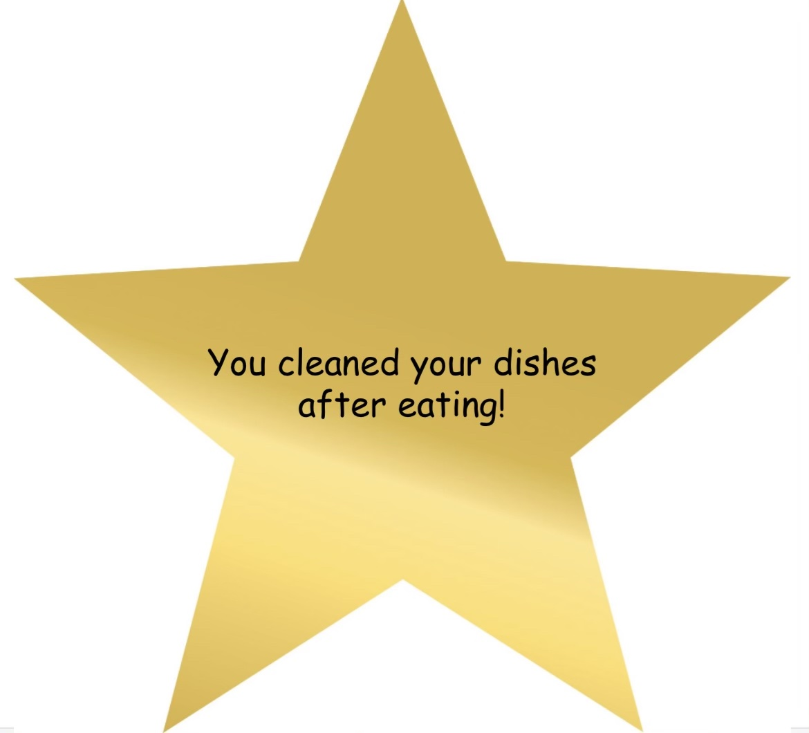 adulting award for doing the dishes