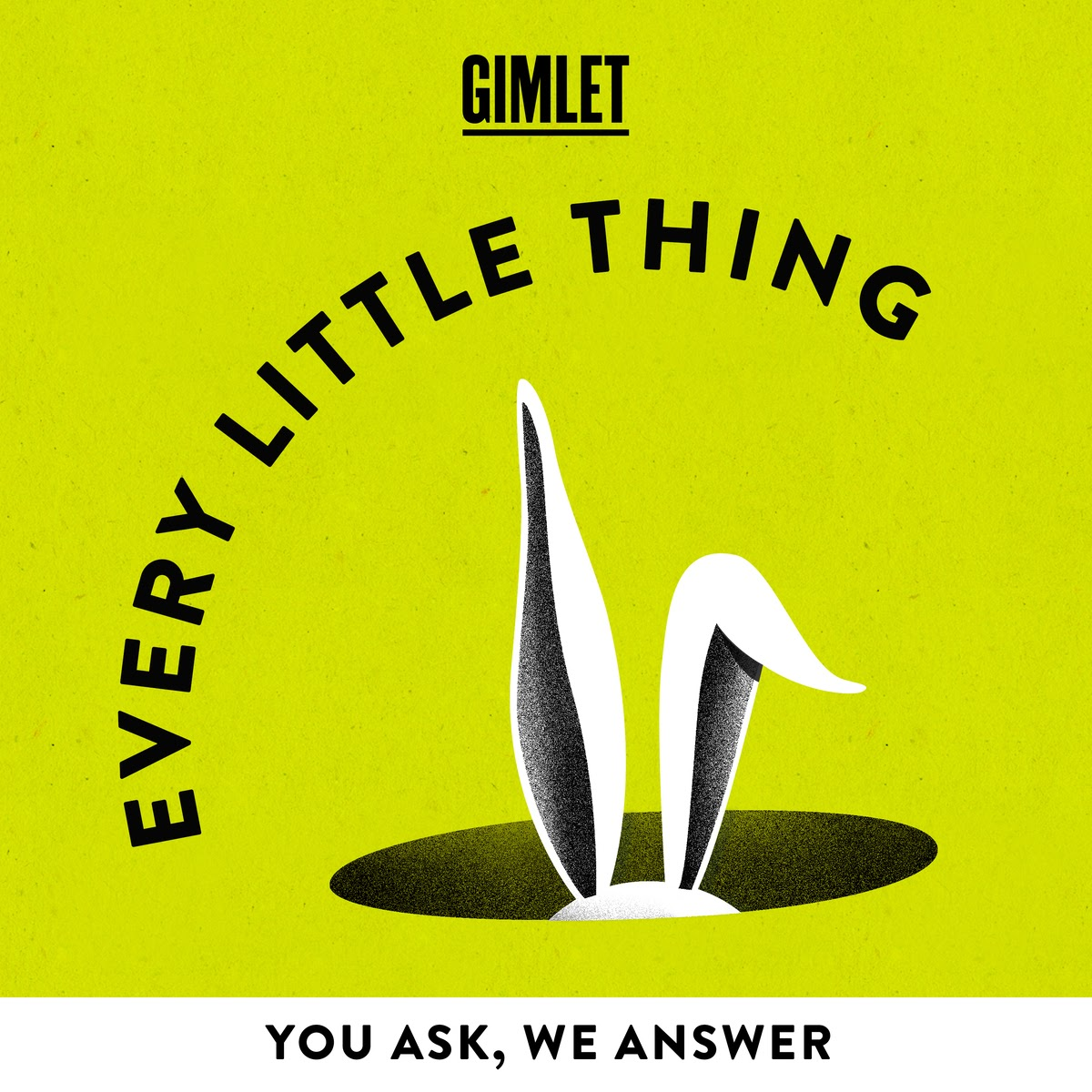 Every Little Thing cover art