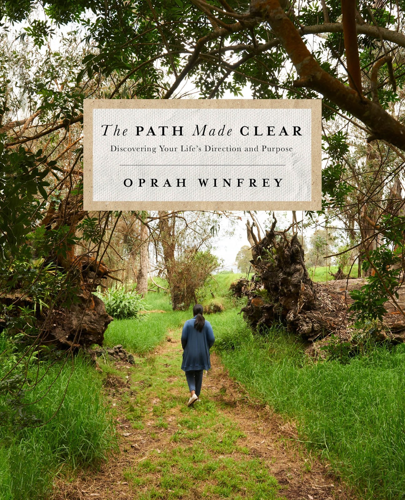 """The cover of Oprah Winfrey's book """"The Path Made Clear."""""""