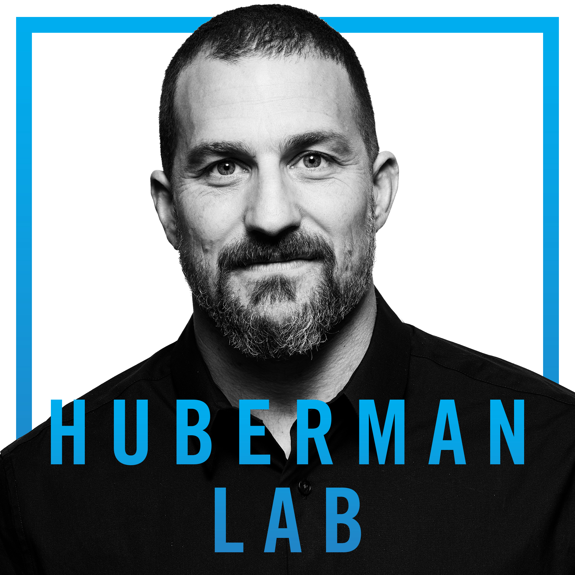 huberman lab podcast