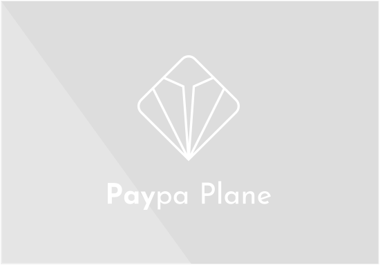 Paypa plane logo vertical white