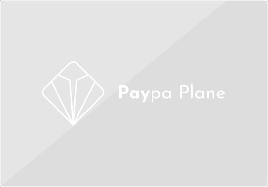 Paypa plane logo horizontal white