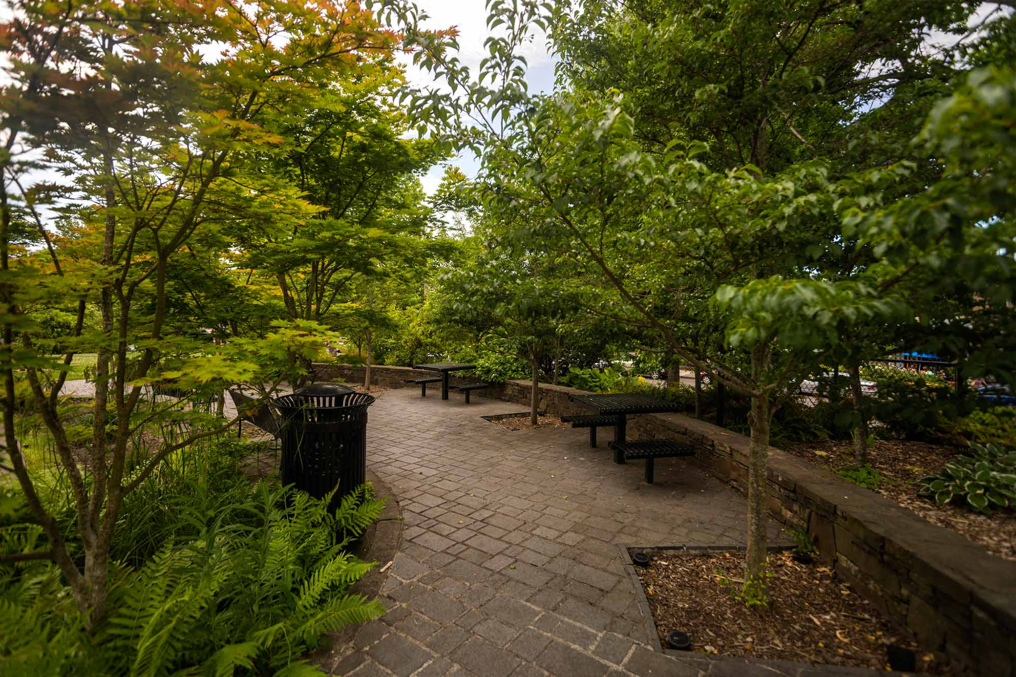 A brown brick pathway with small benches and tables winds around dense trees and bushes
