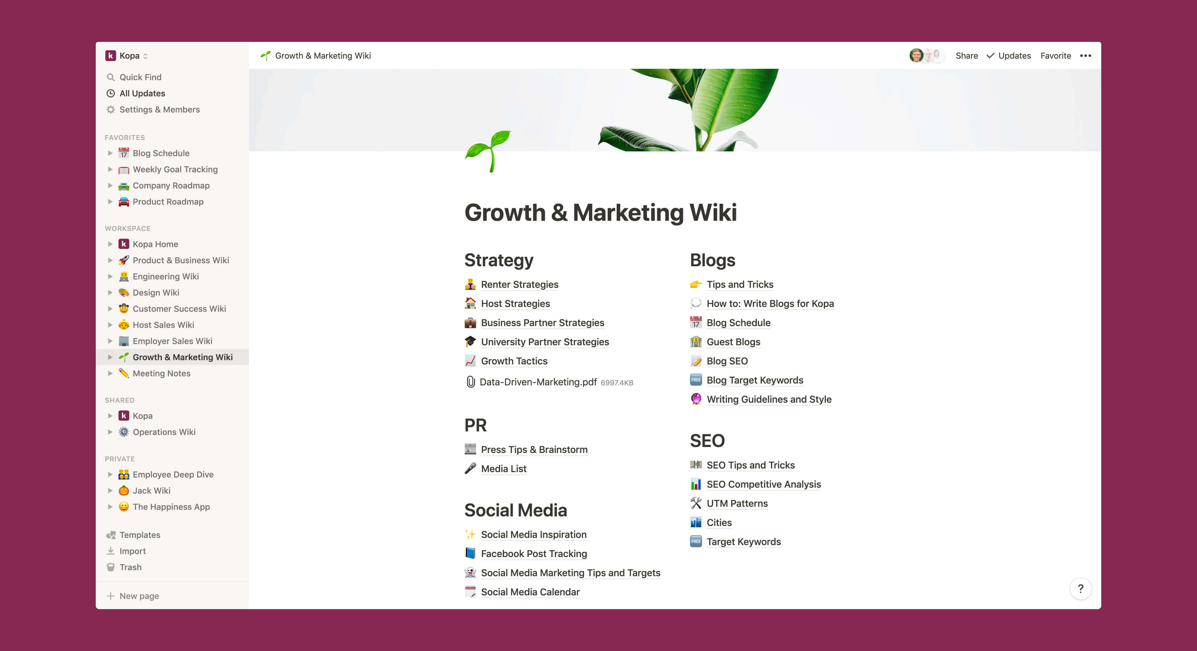 Kopa growth and marketing wiki Notion template