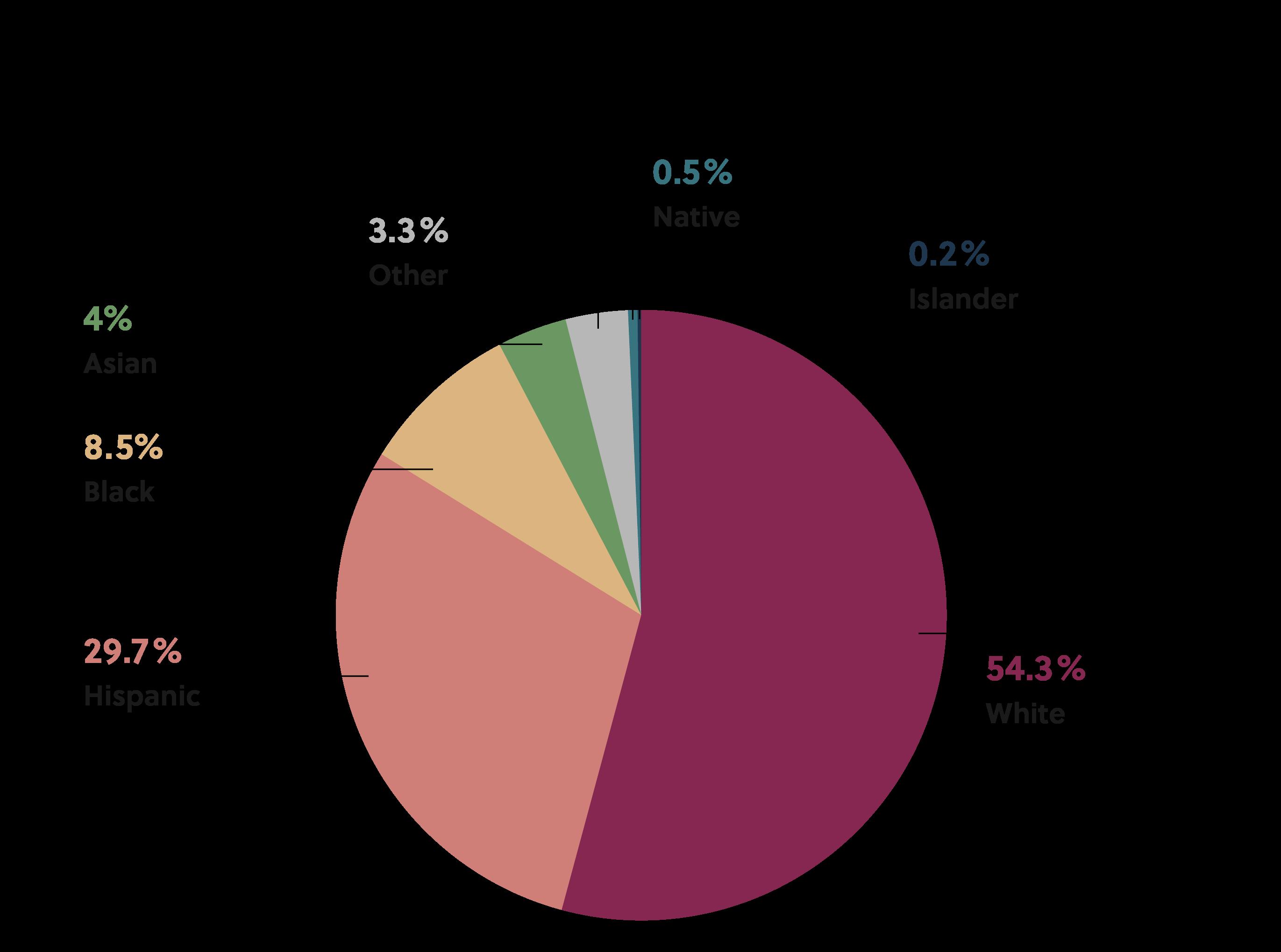 Pie chart of diversity in Denver, Colorado