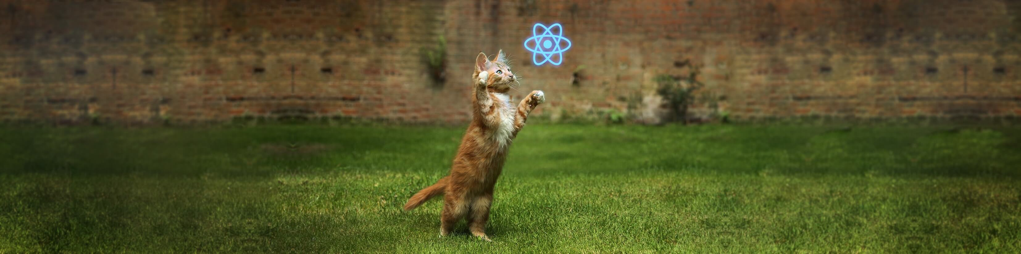 React Native UI kitten is out!
