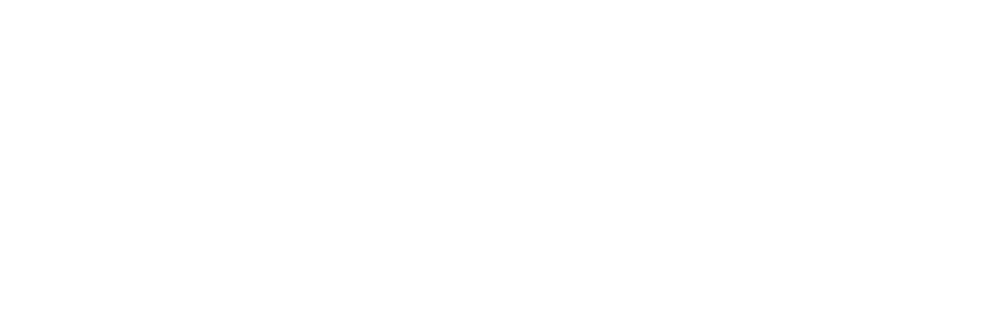 DTES Women's Shelter Logo