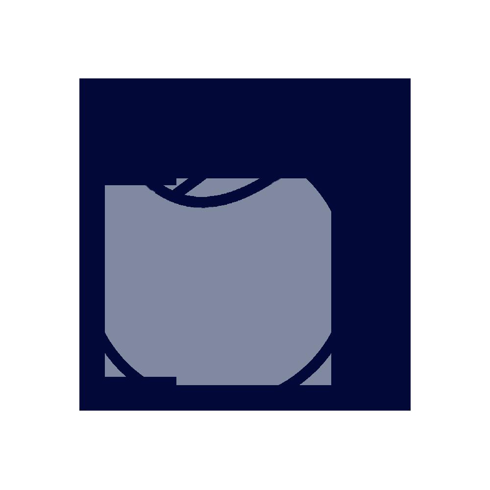 Icon-sostenibilità