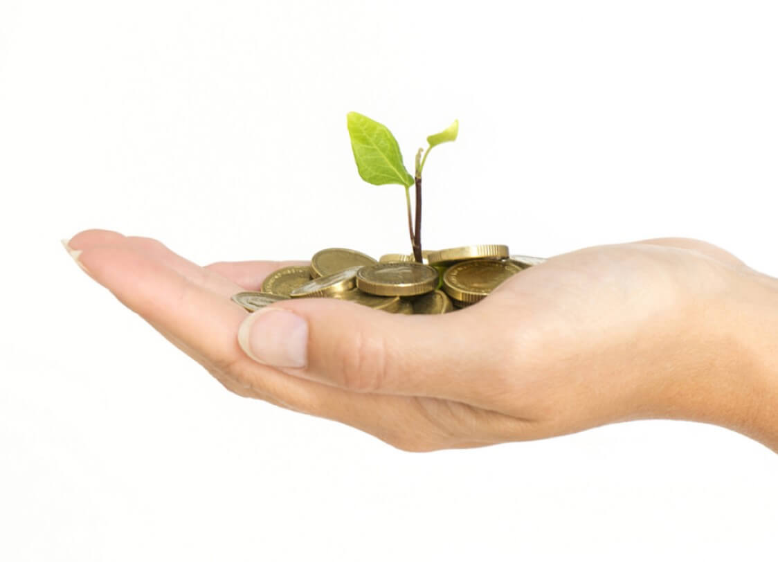 Hand holding a seedling growing out of a pile of coins