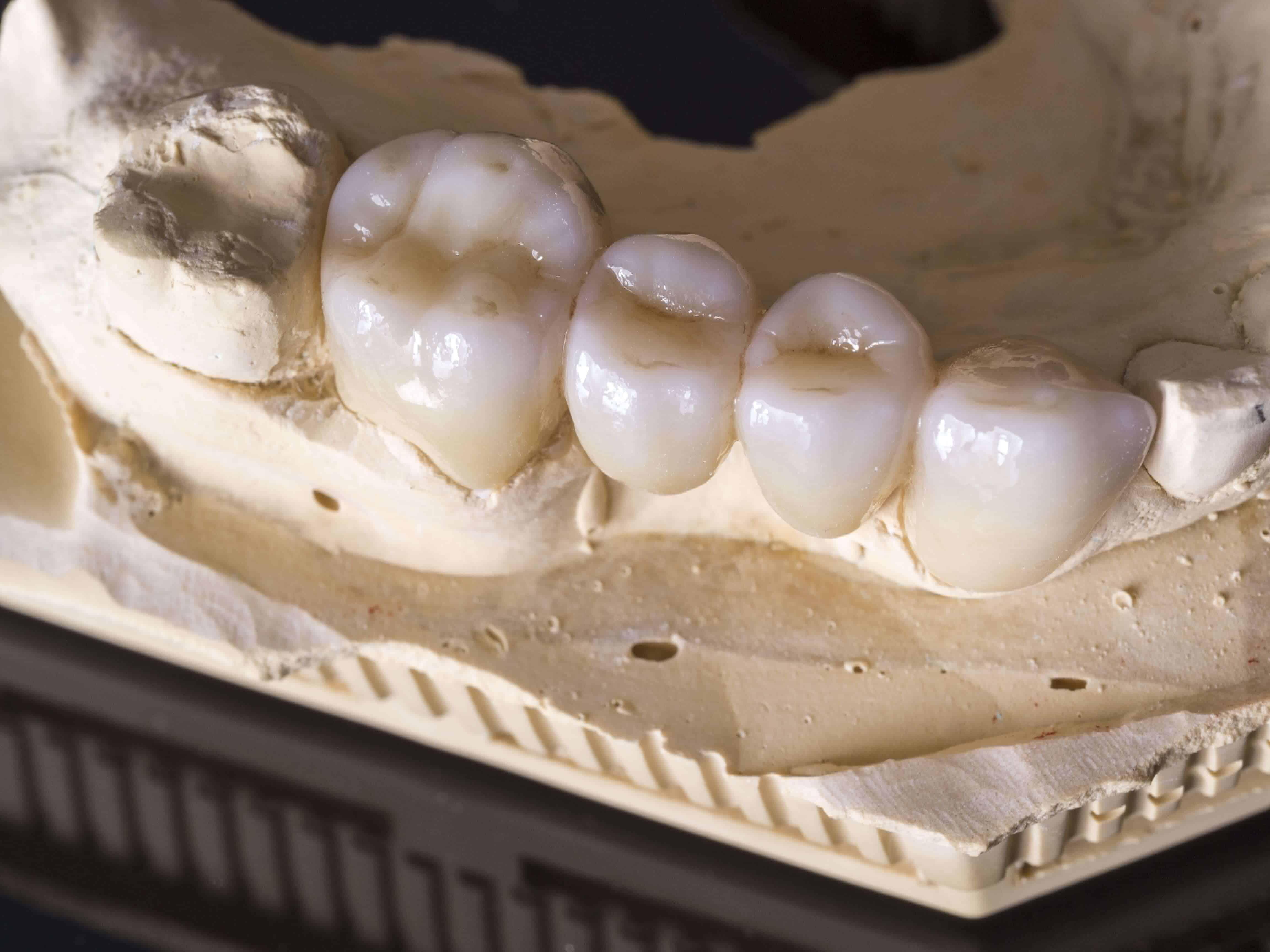 specialist-dentistry-intellidentsia-000