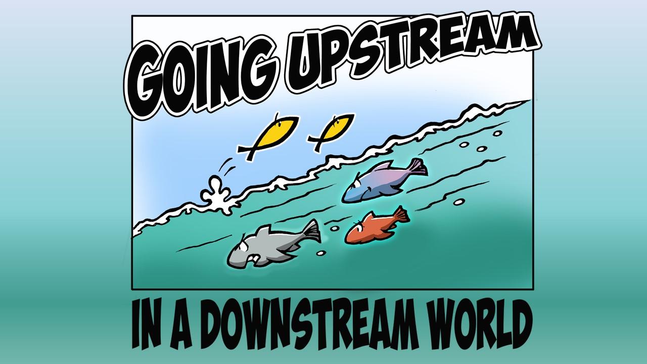 worldly fish swimming downstream, Christian fish going upstream