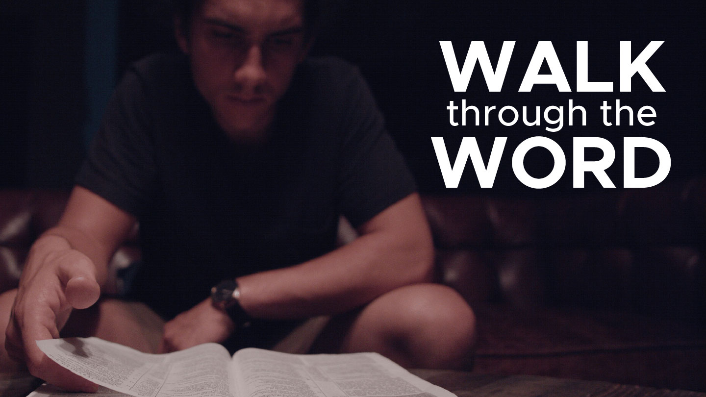 man with a Bible