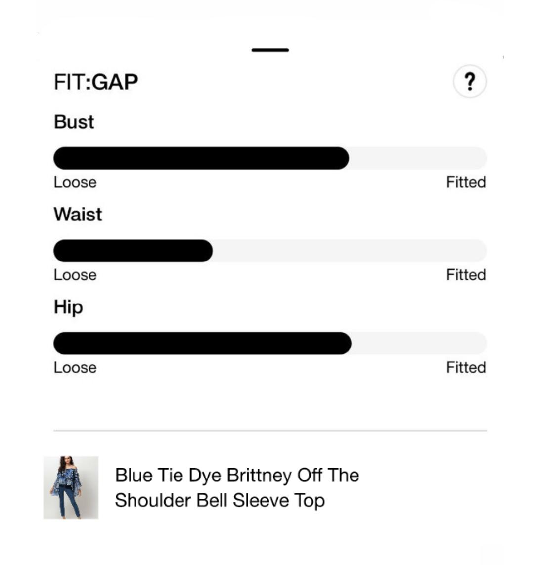 fit gap