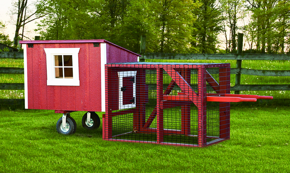Chicken coop structure example. para pollos