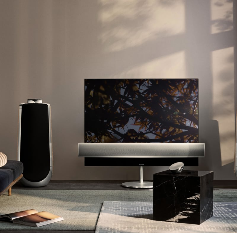 A TV and speaker placed inside a room