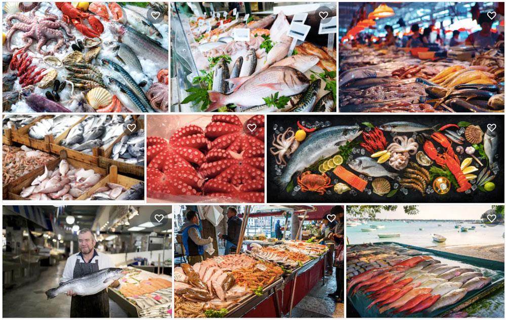 Koláž fotografií s motivem rybího trhu, které se dají nalézt na Shutterstocku. Fotek je celkem devět a všechny jsou krásné.