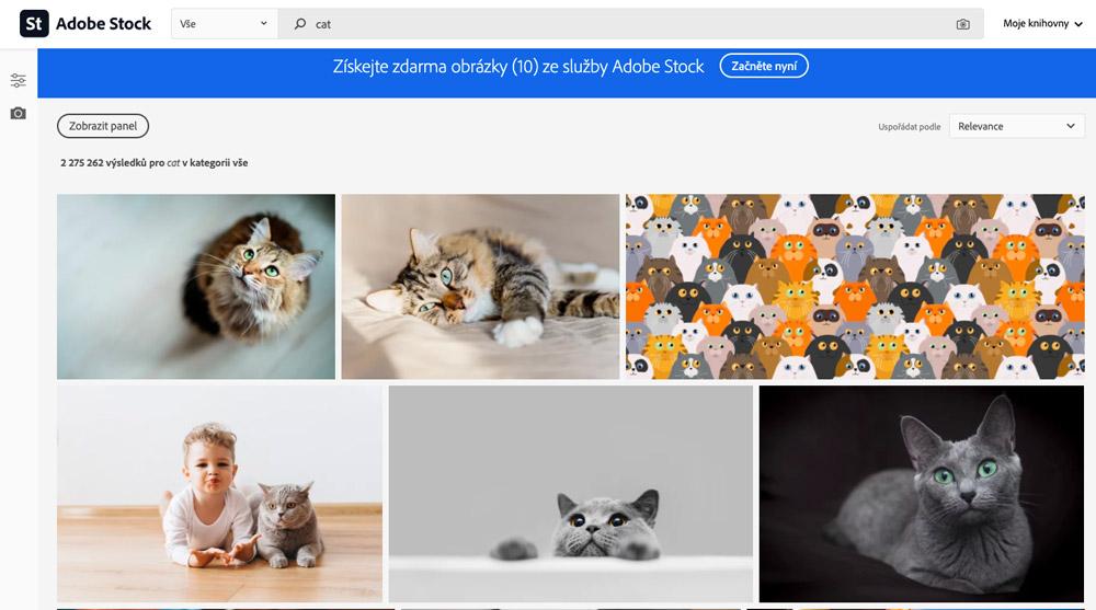"""Stránka fotobanky Adobe Stock, na které je ve vyhledávání zadán výraz """"cat"""". Na stránce se ukazují fotky koček."""