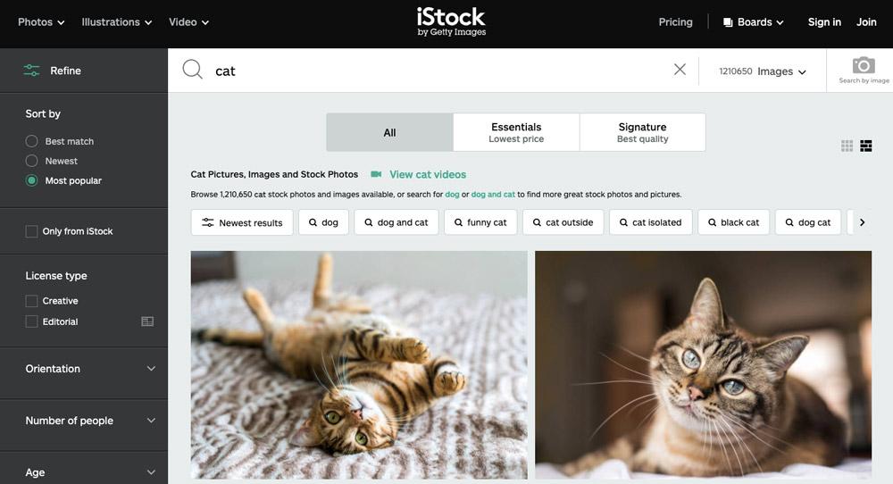 """Stránka fotobanky iStock, na které je ve vyhledávání zadán výraz """"cat"""". Na stránce se ukazují fotky koček."""