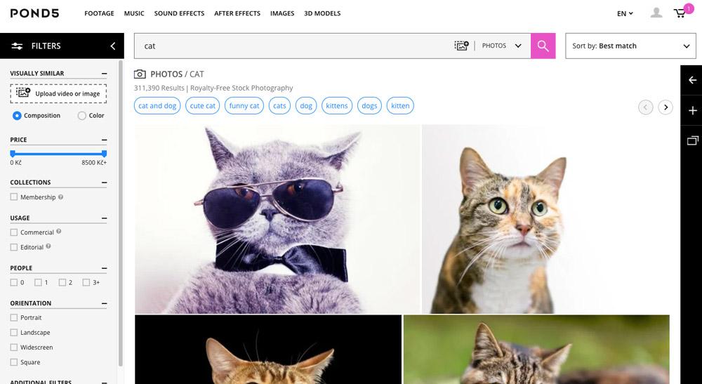 """Stránka fotobanky Pond5, na které je ve vyhledávání zadán výraz """"cat"""". Na stránce se ukazují fotky koček."""
