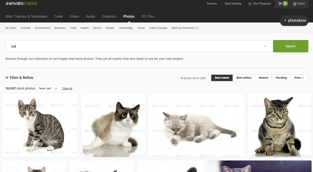 """Stránka služby Envato Market, na které je ve vyhledávání zadán výraz """"cat"""". Na stránce se ukazují fotky koček."""