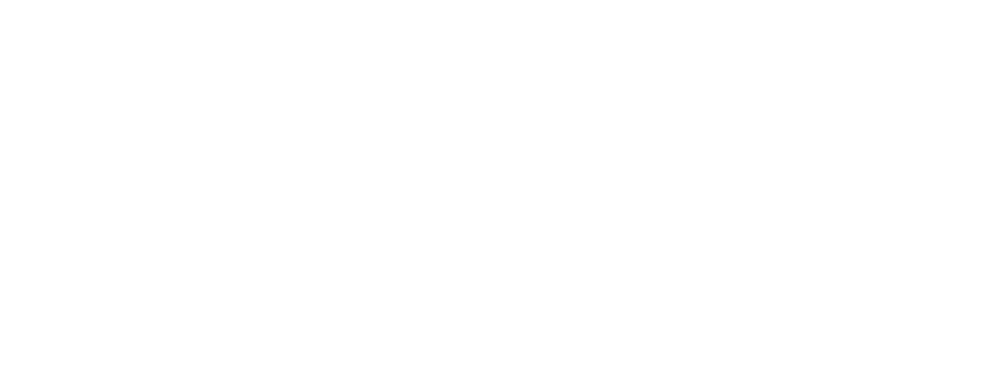 En Capital Holdings logo in white colour