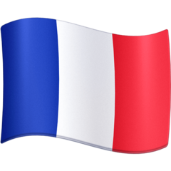 debt collection agency France
